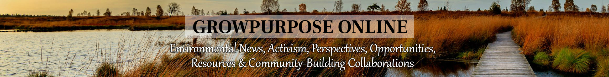 GrowPurpose Online