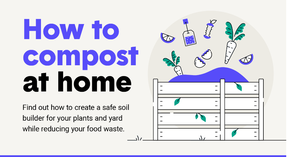 How To Compost Infographic excerpt