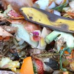 5 community composting resources you can start using today