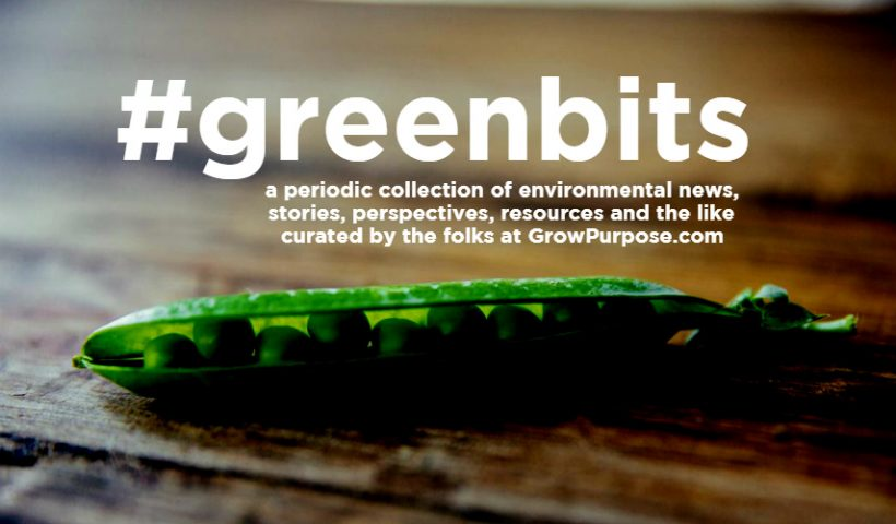 greenbits-feature-pic