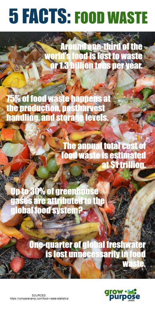 5FACTS-foodwaste
