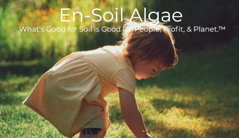 Screenshot-en-soil-algae