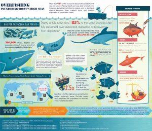 OverfishingInfographic