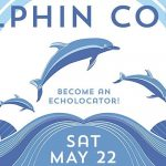 dolphin-count-may-22