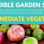 edible-garden-int-veg-header