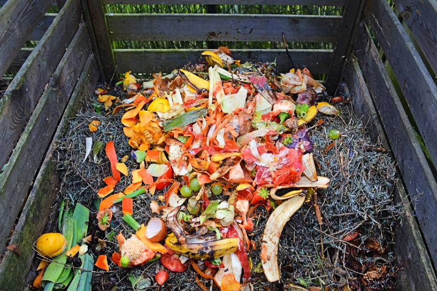 community composting tips