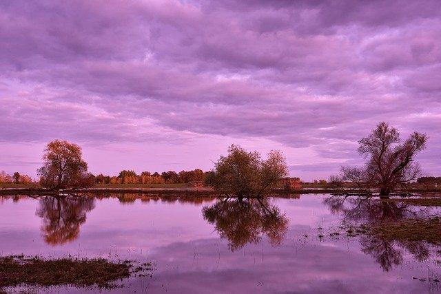 river-purple