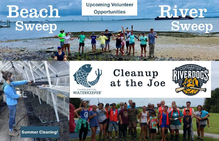 waterkeeper-summer-volunteering