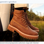 Green Business Spotlight: Sustainable Boots