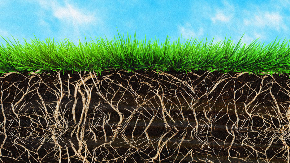 renewable energy from the soil