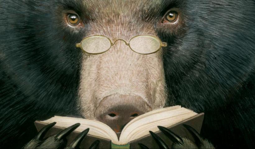 illustration - bear reading a book