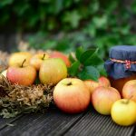 APPLE NUTRITION