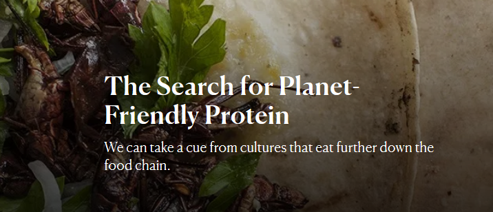 Screenshot- Search for Planet-Friendly Protein