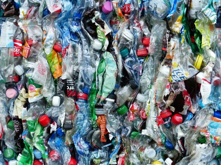 plastic pollution producer responsibility