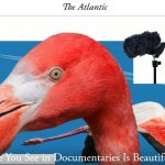 The Problem with Nature Documentaries
