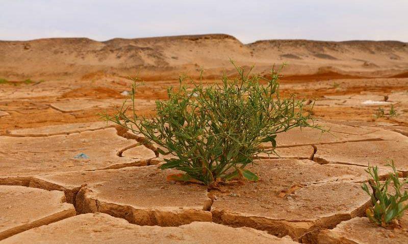 climate-change-drought