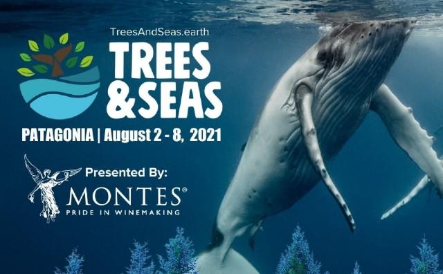 Screenshot Trees and Seas