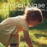 GREEN BUSINESS: Enlightened Soil is Replacing Chemical Fertilizers