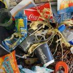 The Ocean-Bound Plastic Problem