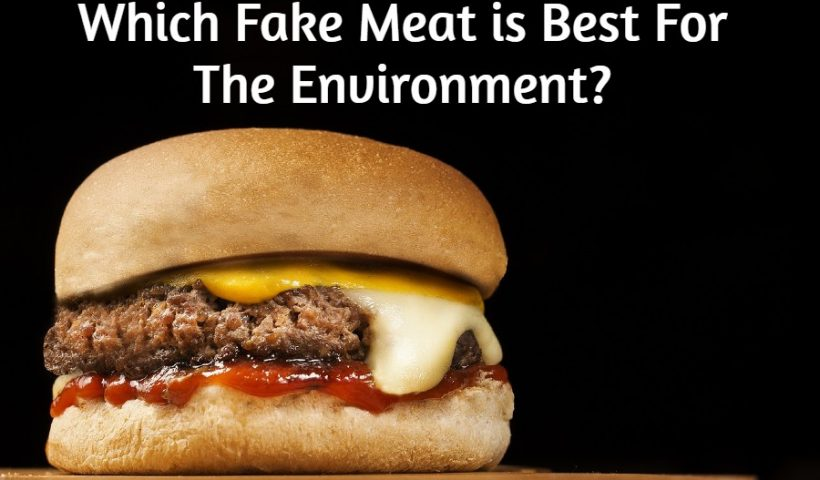 fake-meat-substitute-environment