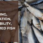 Overfishing: A Unique Perspective