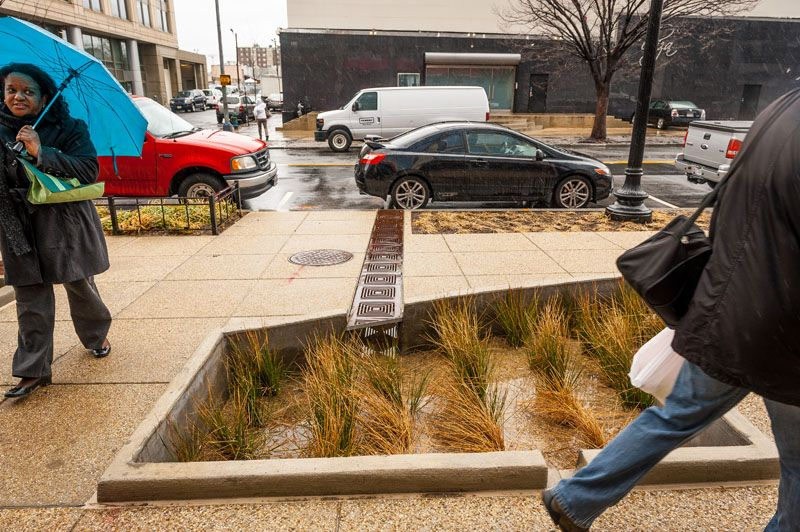 'Green Infrastructure' for Clean Water Shows Its Worth in Washington, D.C.